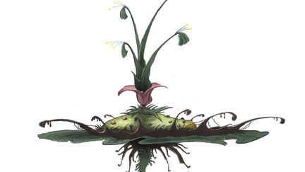 Alien Lilypad Concept