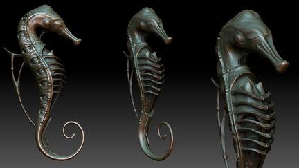 sea horse fish