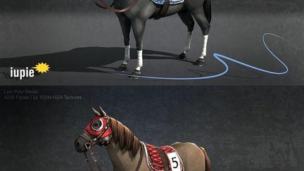 Race Horse Simulation - 2