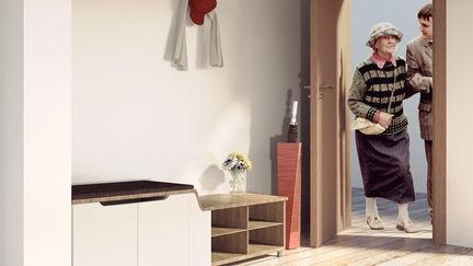 Furniture Design for apartment entrance