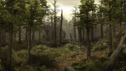 Burned forest village