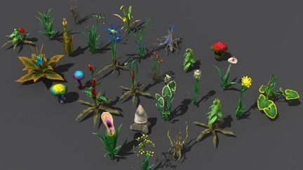 Herbs in Gothic 3