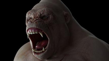 Albino Gorilla WIP.