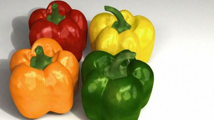 The colourful world of Capsicums