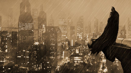 The Silent Guardian of Gotham