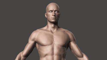 anatomical study full body male