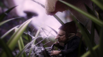 quiet under the mushroom