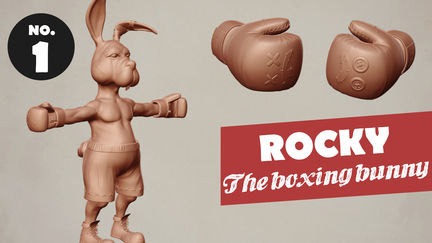 Rocky the boxing bunny
