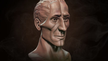 Male Face - Bust