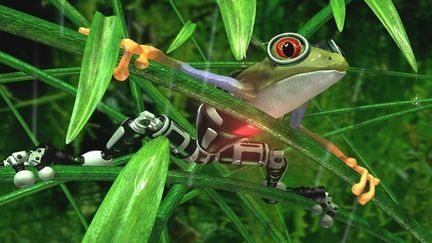 Cyber Frog