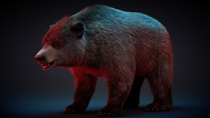 Bear / Fiber Fx (Hair Tool) created with LightWave and rendered with Otoy Octane PBR
