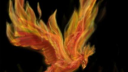 Phoenix (creature study)