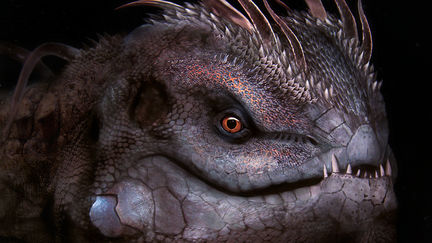 Michera ignisaurus 1 e62d42b7 oyop