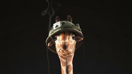 Jerry the Giraffe