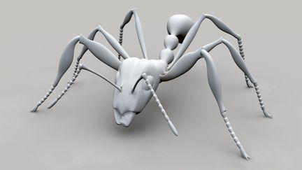 Ant Model