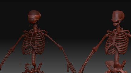 ZSphere Skeleton