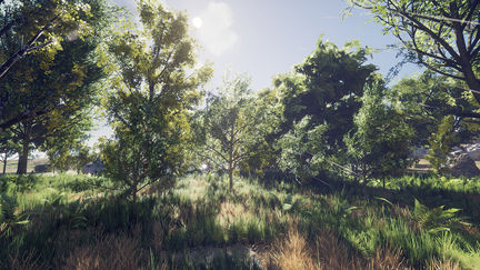 Wind in the woods - UE4 level