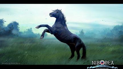 NIBOREA: The Stallion