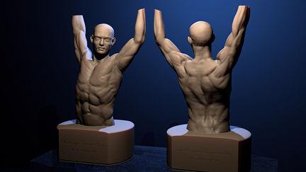 Human Anatomy study 2013