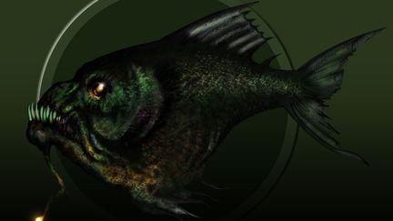 AnglerSketch