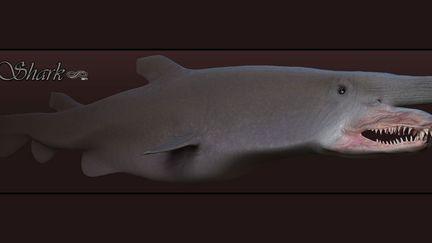 Goblin Shark (WIP)