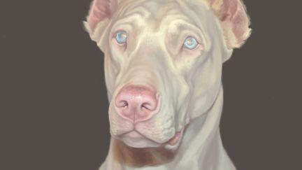 The White Dog (albino)