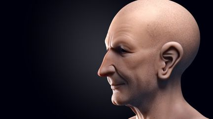 Realistic face modeling