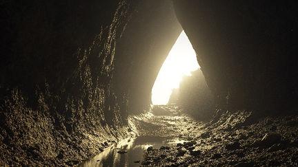 Cavernae