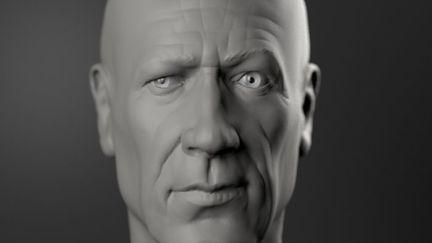 Head anatomy study