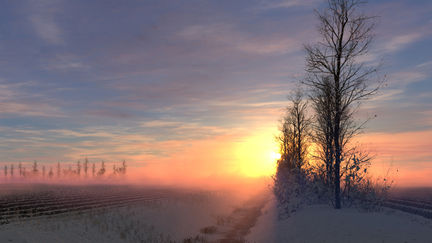 Dutch Winter Sunrise