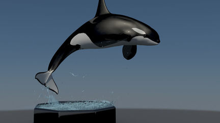 HMC 25 Ocean Creatures - Keiko Tribute - Continued WIP