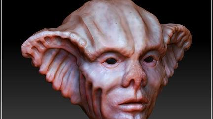 Rendered Head Concept