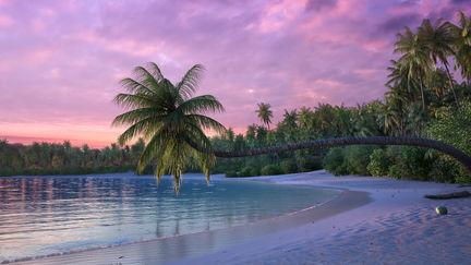 Scenic palm beach