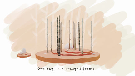 One day, in a tranquil forest...