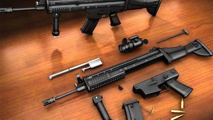 The FN-SCAR L AR