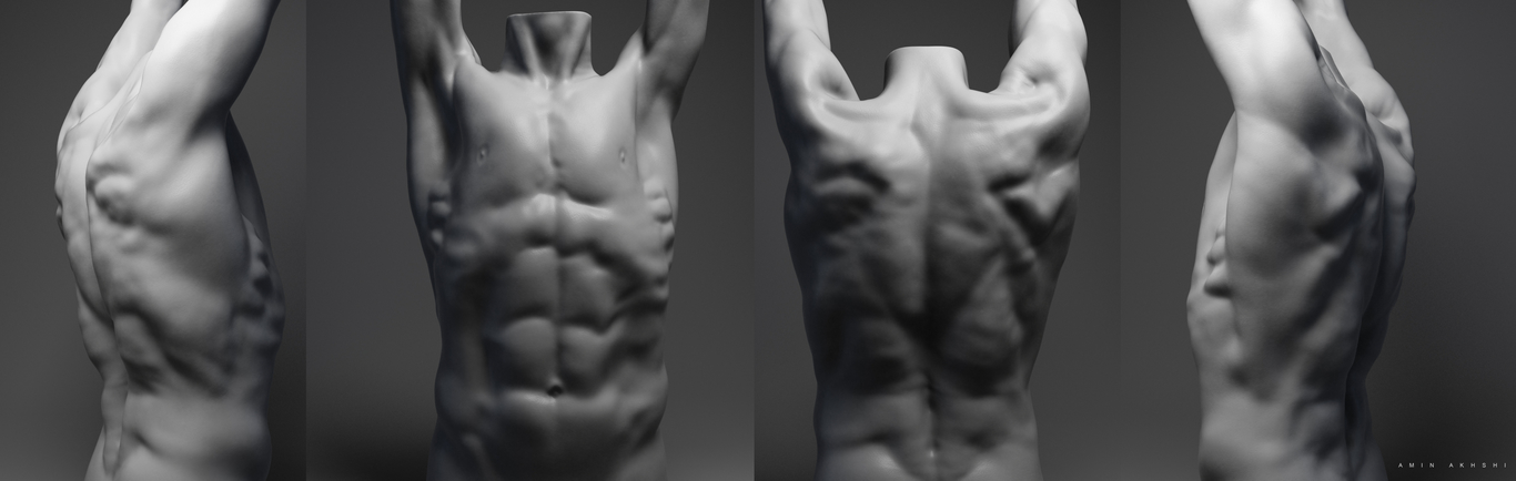 Amin akhshi torso sculpting 1 989f76f7 hxif