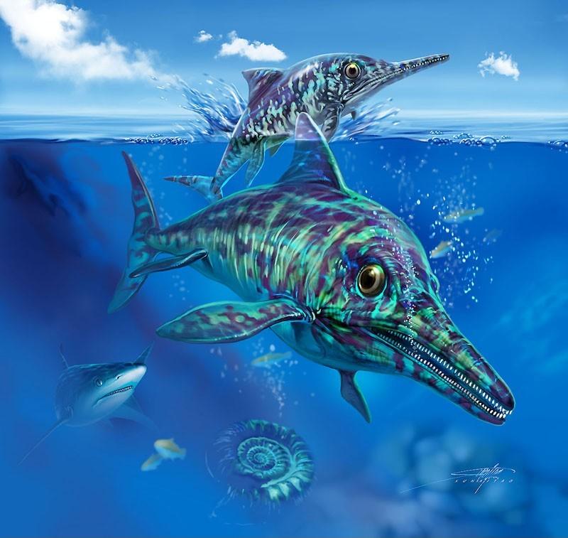 Casper ichthyosaurus 1 88a1e39e ef2y