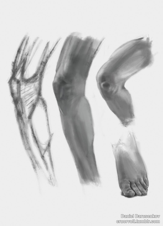 Cruor volt week 20 anatomy stud 1 457ea9fd hq2q