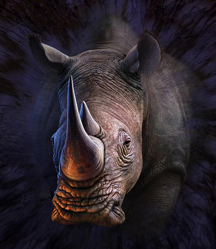Jerrylofaro lone rhino 1 1 fac99e69 bi55