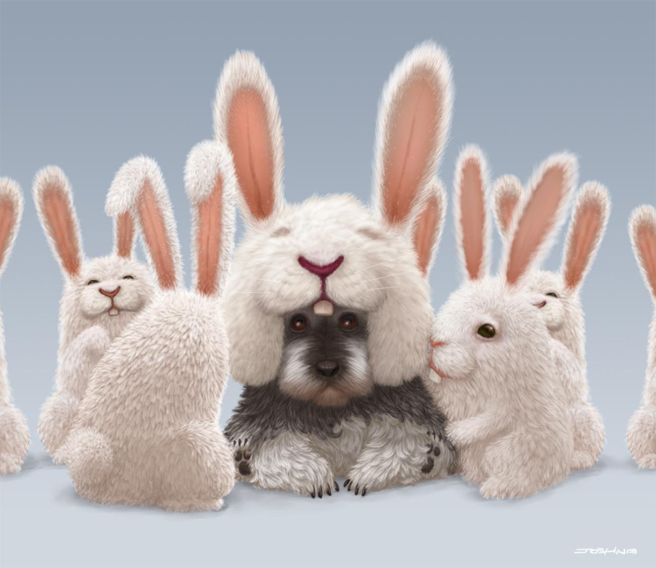 Joshna rabbit dog 1 fe9832bb zggn