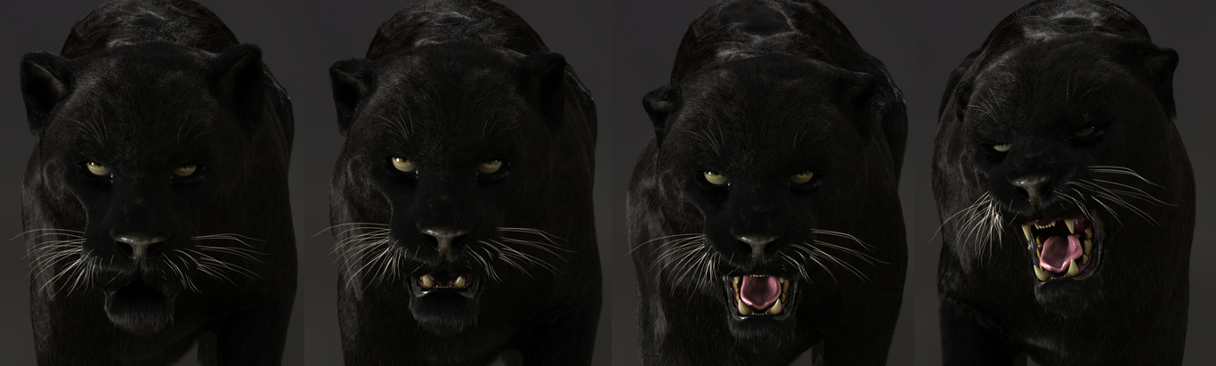 Massimorighi black panther 1 dce3a6fe rc0a