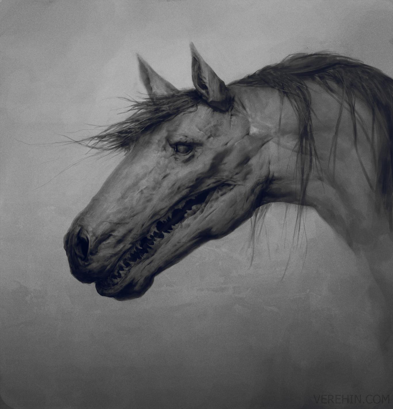 Maxverehin horse 1 8297dbd6 zvbb