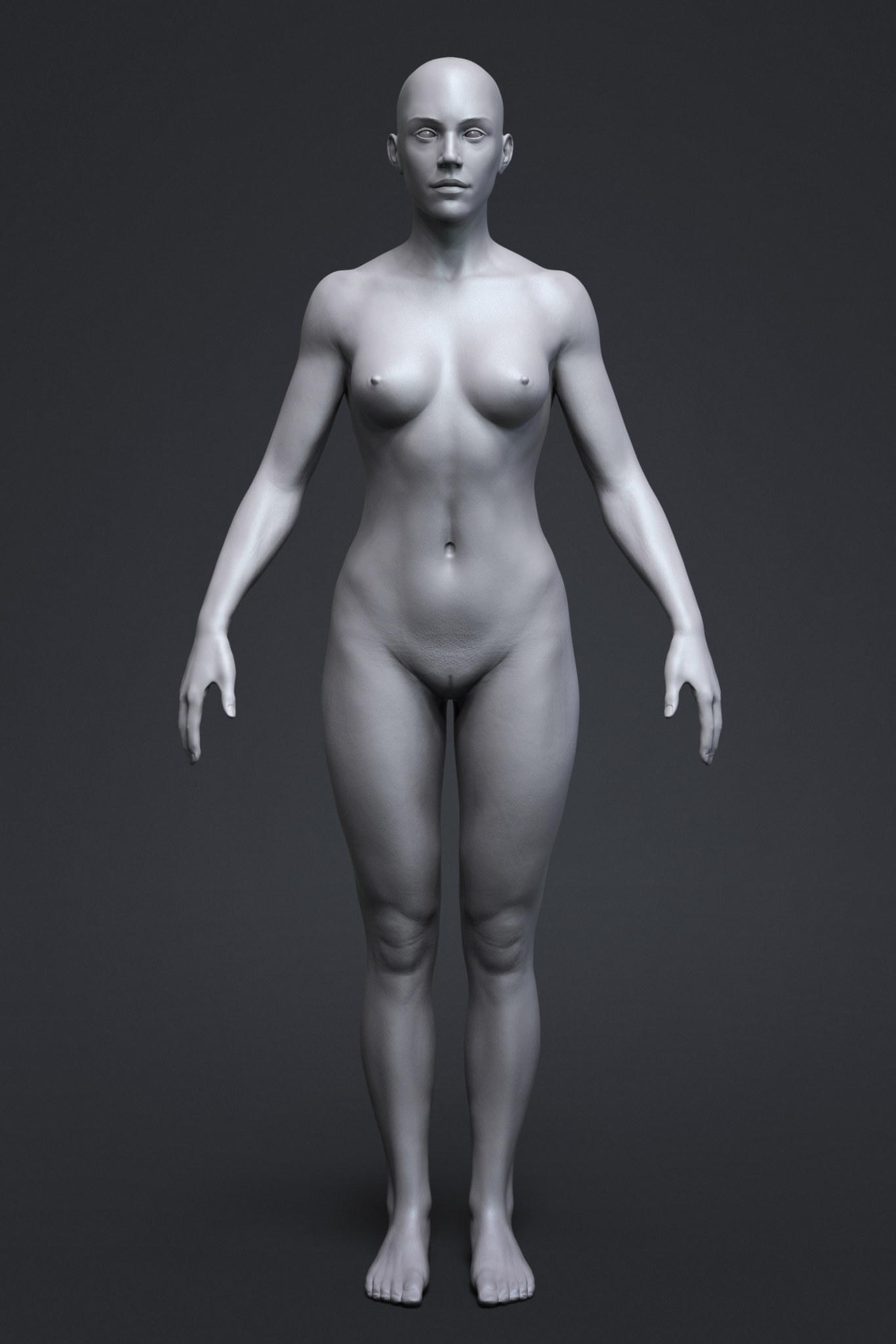 Paskal anatomy female tool  1 afa1c9b9 oqhk