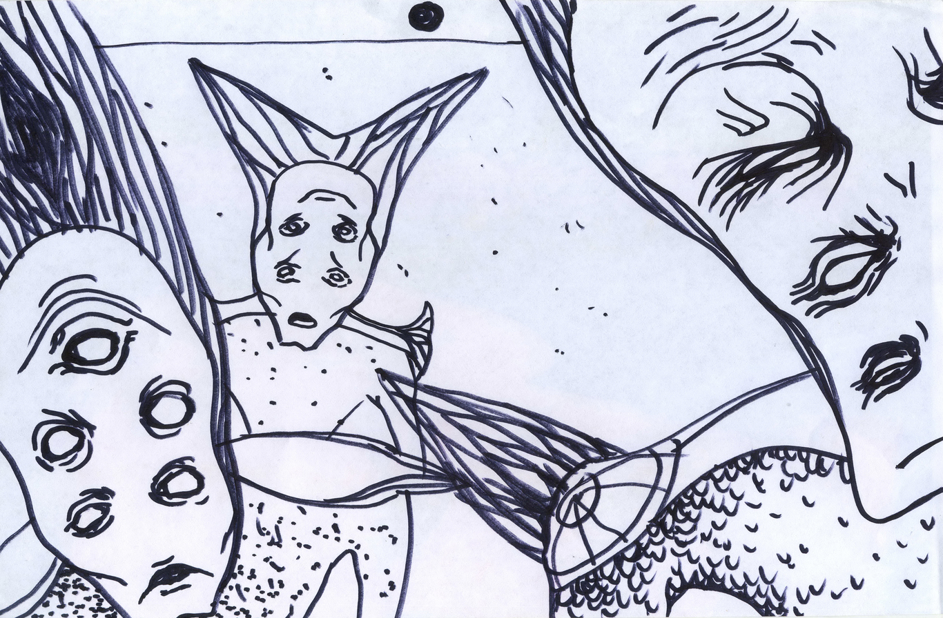 Salamandra 1 sketch 1 cb0f35dd r1wj