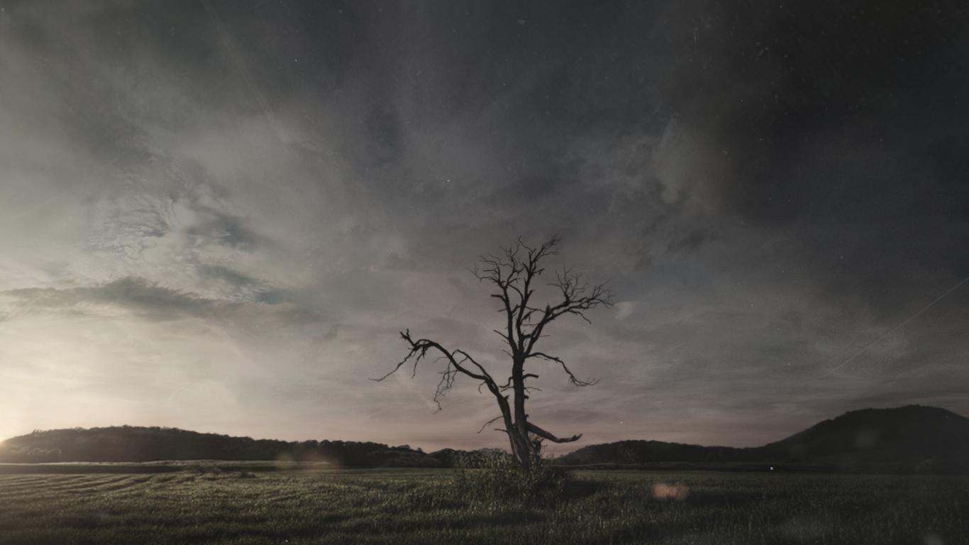 Tobiasschreeck burning tree fumefx 1 6e83cc9f vzx4