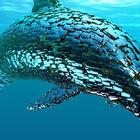 Artificial Life 1.0 | Oceans - Dolphin