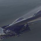 Mech Glider
